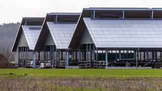 Rifacimento tetti capannoni agricoli