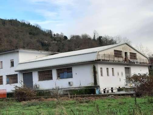 tetto industriale san colombano certenoli